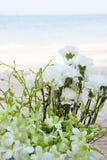 Boda adornada en la disposición de la boda de playa Foto de archivo libre de regalías