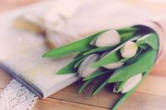 Boda blanca del cordón del tulipán Fotografía de archivo libre de regalías