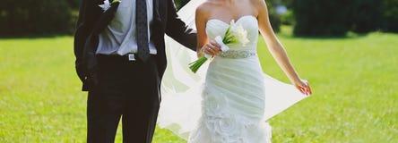 Boda feliz, novia y novio junto Imagen de archivo libre de regalías