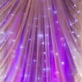 Boda púrpura Imagenes de archivo