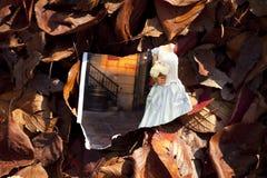 Boda quebrada Foto de archivo