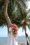 Boda tropical Foto de archivo libre de regalías