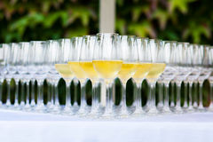 Boda, vidrio de champán Fotos de archivo