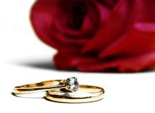Boda y anillos de compromiso Fotografía de archivo libre de regalías