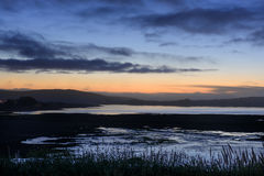 Bodega bay wetlands at dusk Royalty Free Stock Images
