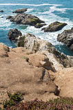 Bodega Head Coastal Ridge and Tide Royalty Free Stock Image