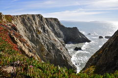 Bodega Head. Coastal View from Bodega Head Peninsula on the San Andreas Fault; Sonoma County, CA Stock Photos