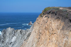 Bodega Head Promontory and Ocean Stock Photos