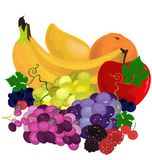 Bodegon, vruchten klaar te eten vector illustratie