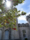 Bodelwyddan城堡的庭院在北部威尔士 免版税库存图片