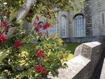 Bodelwyddan城堡的庭院在北部威尔士 库存照片