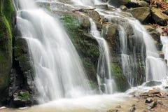 Bodem van de waterval onder het bos stock afbeelding