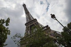 Bodemmening van de Toren van Eiffel onder de takken van bomen Royalty-vrije Stock Afbeelding