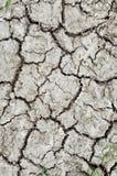 Boden-Beschaffenheit Stockbild