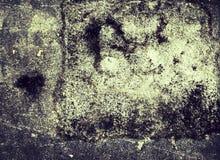 Boden-Mustertrieb des Schmutzes schmutziges im Sepia Stockfoto