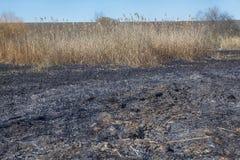 Boden nach Feuer Lizenzfreie Stockbilder