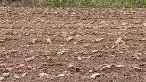 Boden wurde gepflogen gepflanzt zu werden Stockfoto