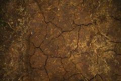 Bodenbeschaffenheit Stockfotografie