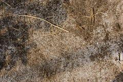 Bodenbeschaffenheitshintergrund Lizenzfreie Stockfotos
