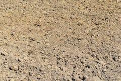 Bodenklumpen auf dem Reisgebiet vor Betriebsreis Stockfotografie