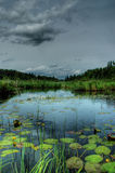 Bodenloser See Stockbild
