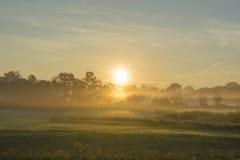 Bodennebel glüht während des Sonnenaufgangs Stockbilder