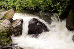 Bodenperspektive und Gebirgswasserfall Stockfotos