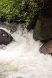 Bodenperspektive und Gebirgswasserfall Lizenzfreie Stockfotografie