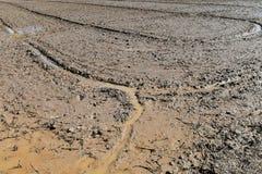 Bodenschlamm auf dem Reisgebiet bereiten sich für Betriebsreis in der Landwirtschaft vor Stockbild