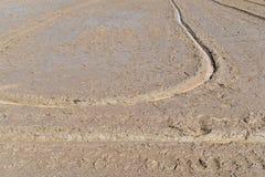 Bodenschlamm auf dem Reisgebiet bereiten sich für Betriebsreis in der Landwirtschaft vor Stockbilder
