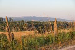 Bodensee, année 2013 Photos libres de droits