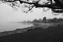 Bodensee in de Mist Royalty-vrije Stock Fotografie