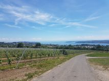 Bodensee Germany Stock Photography
