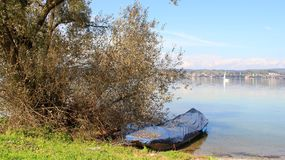 Bodensee lake in summer Royalty Free Stock Photography