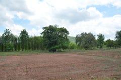 Bodenvorbereitung Stockfoto
