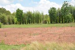 Bodenvorbereitung Stockfotos