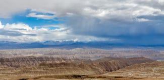 Bodenwald in Tibet-Hochebene Lizenzfreie Stockfotografie
