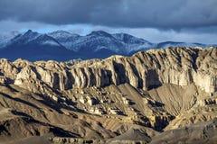 Bodenwald in Tibet-Hochebene Lizenzfreies Stockbild