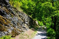 Bodetal path, Harz Stock Photography