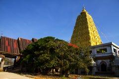 Bodh Gaya och träd Royaltyfri Fotografi
