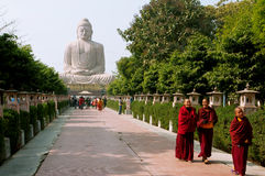 BODHGAYA, LA INDIA: Grupo de monjes budistas que caminan en el callejón de la estatua enorme de Buda Fotografía de archivo libre de regalías