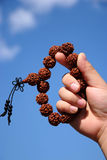 Bodhi seeds in their hands Stock Photo