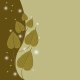 Bodhi träd Royaltyfria Foton