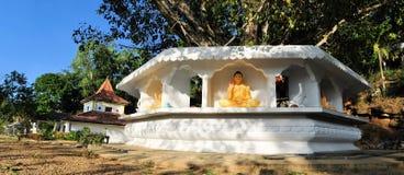 Bodhi tree in front of Buddhist temple, Ella, Sri Stock Image