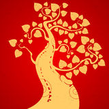 Bodhi tree Stock Image