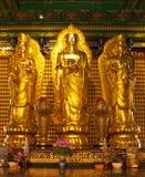 Bodhisattva Immagini Stock Libere da Diritti