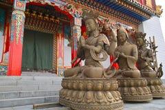 Bodhisattva Statues Stock Photos
