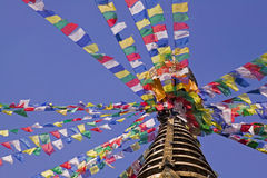 bodhnath kathmandu Royaltyfri Foto