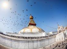 Bodhnath stupa with flying birds Stock Photos