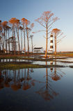 Bodie Island Lighthouse OBX Golden Reflections Royalty Free Stock Image